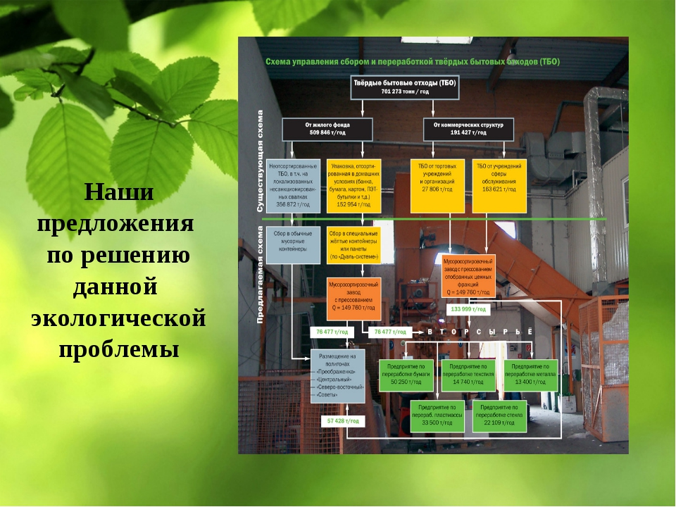 Наши предложения по решению данной экологической проблемы