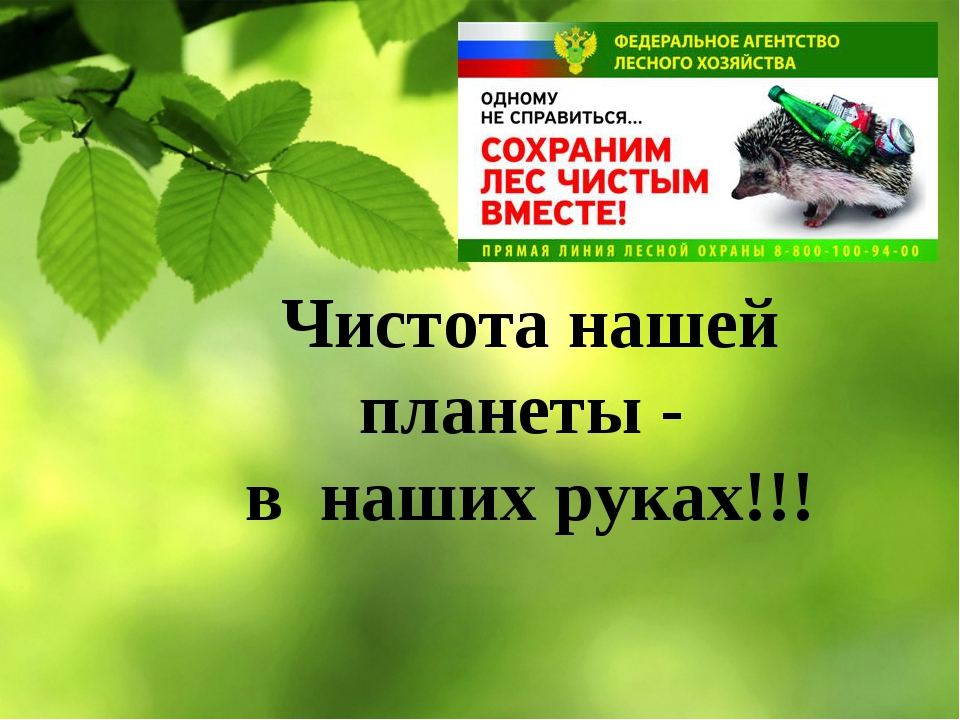 Чистота нашей планеты - в наших руках!!!