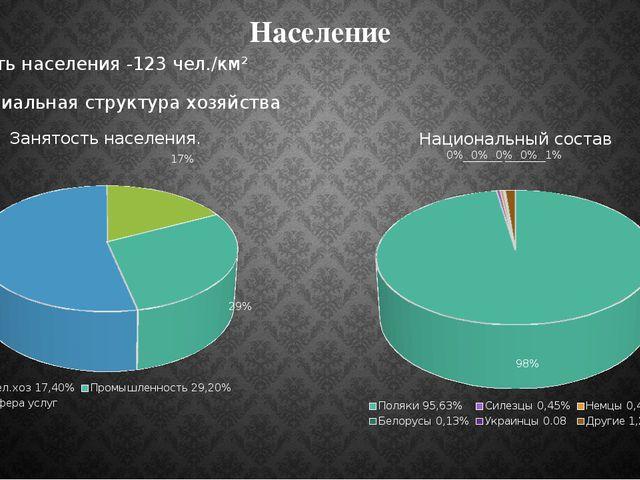 Население Плотность населения -123 чел./км² Индустриальная структура хозяйства