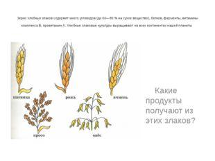 Зерно хлебных злаков содержит много углеводов (до 60—80 % на сухое вещество)