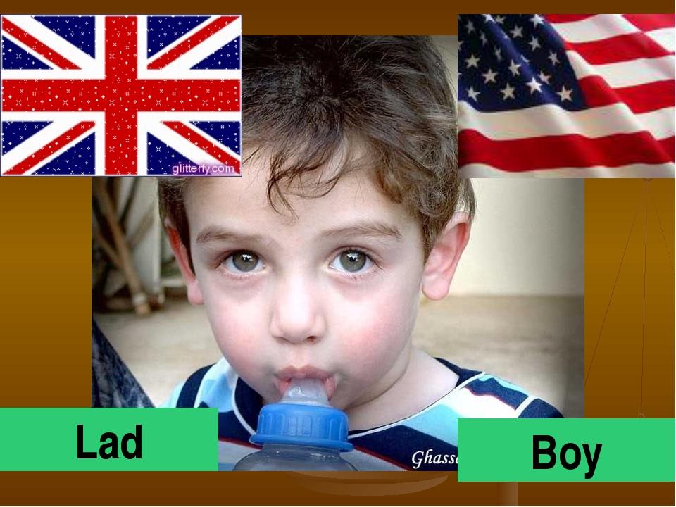Lad Boy