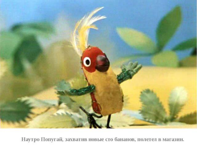 Наутро Попугай, захватив новые сто бананов, полетел в магазин.