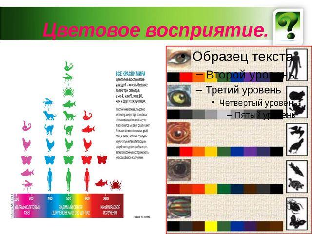 Цветовое восприятие.