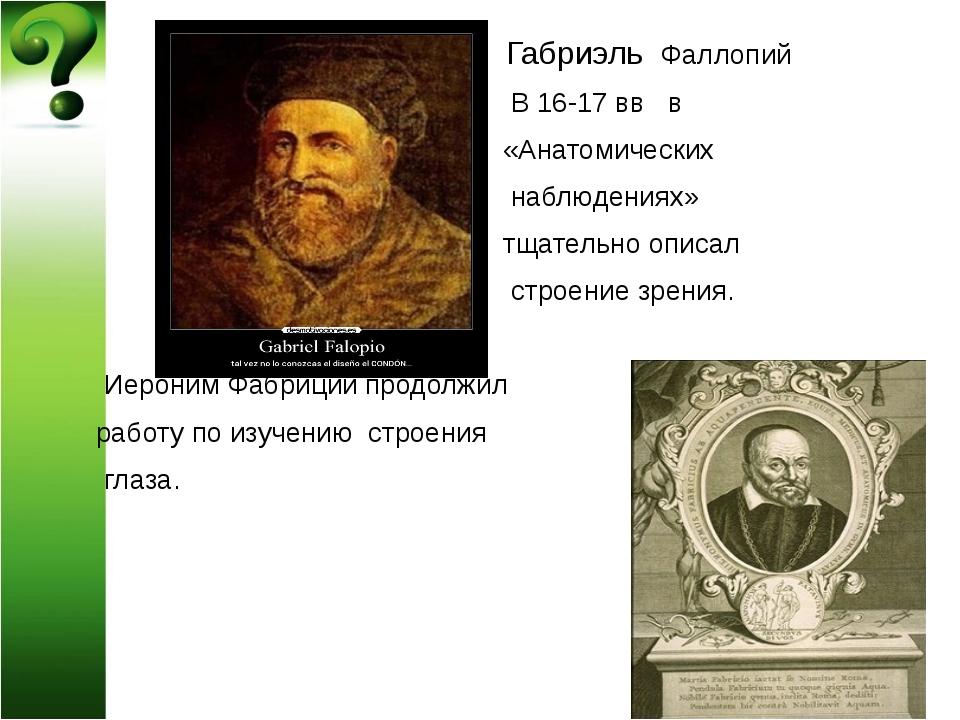 Габриэль Фаллопий В 16-17 вв в «Анатомических наблюдениях» тщательно описал...