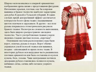 Широко использовались в северной орнаментике изображения древа жизни с предст