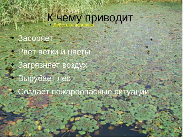 К чему приводит Засоряет Рвёт ветки и цветы Загрязняет воздух Вырубает лес Со...