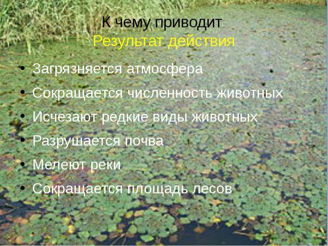 К чему приводит Результат действия Загрязняется атмосфера Сокращается численн...