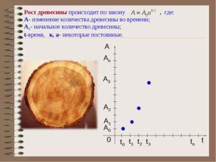 Рост древесины происходит по закону , где: A- изменение количества древесины