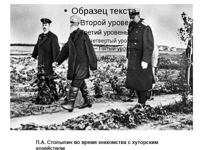 П.А. Столыпин во время знакомства с хуторским хозяйством