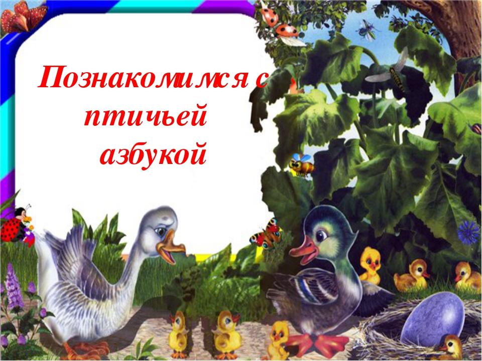 Познакомимся с птичьей азбукой