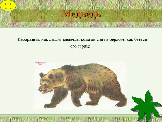 Медведь Изобразить, как дышит медведь, кода он спит в берлоге, как бьётся ег...