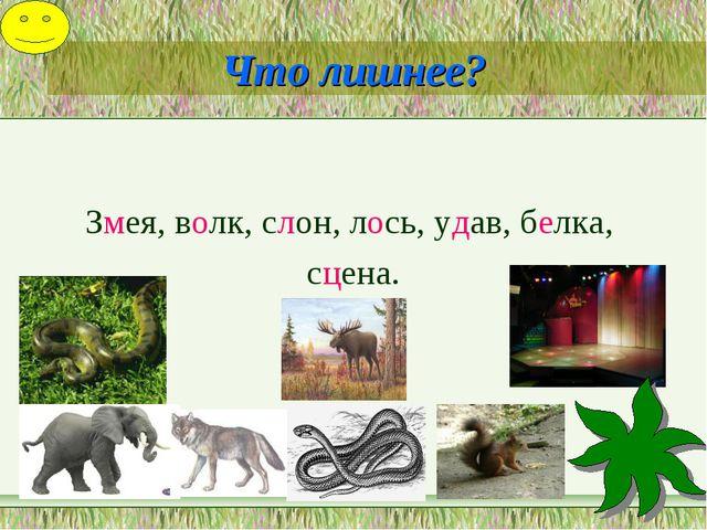 Что лишнее? Змея, волк, слон, лось, удав, белка, сцена.