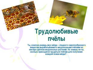 Трудолюбивые пчёлы Ты, конечно,знаешь вкус мёда – сладкого сиропообразного ве