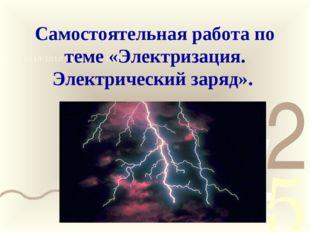 Самостоятельная работа по теме «Электризация. Электрический заряд».