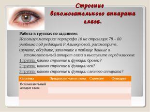Строение вспомогательного аппарата глаза. Работа в группах по заданиям: Испол