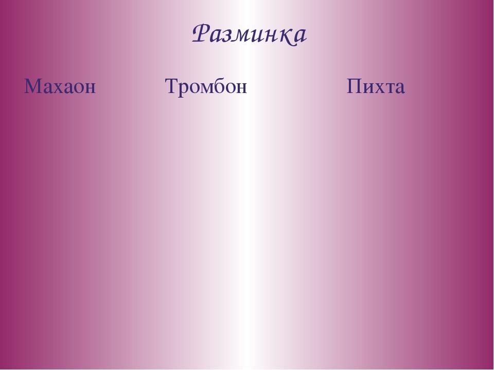 Разминка Махаон Тромбон Пихта
