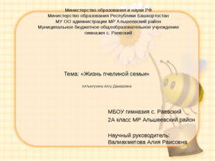 Тема: «Жизнь пчелиной семьи» Алтынгузина Алсу Дамировна  МБОУ гимназия с. Ра