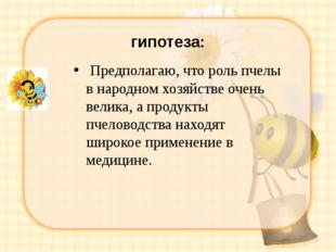 гипотеза: Предполагаю, что роль пчелы в народном хозяйстве очень велика, а п