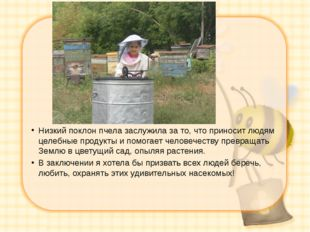 Низкий поклон пчела заслужила за то, что приносит людям целебные продукты и