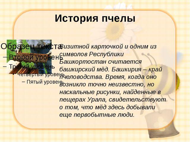 История пчелы Визитной карточкой и одним из символов Республики Башкортостан...