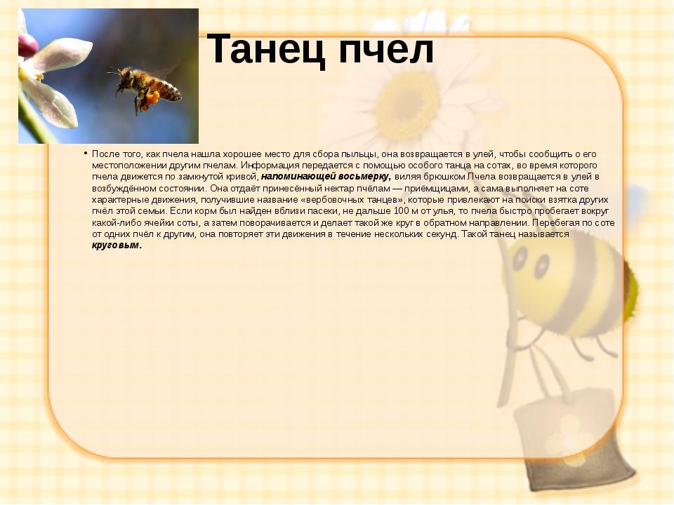 Танец пчел После того, как пчела нашла хорошее место для сбора пыльцы, она во...