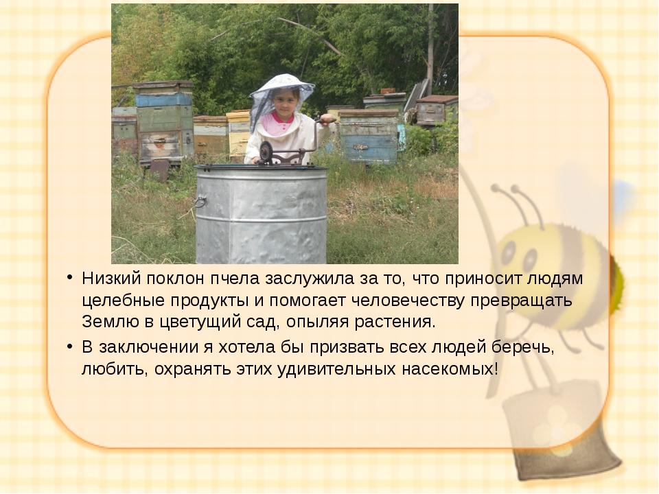 Низкий поклон пчела заслужила за то, что приносит людям целебные продукты и...