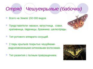 Отряд Чешуекрылые (бабочки) Всего на Земле 150 000 видов. Представители- маха