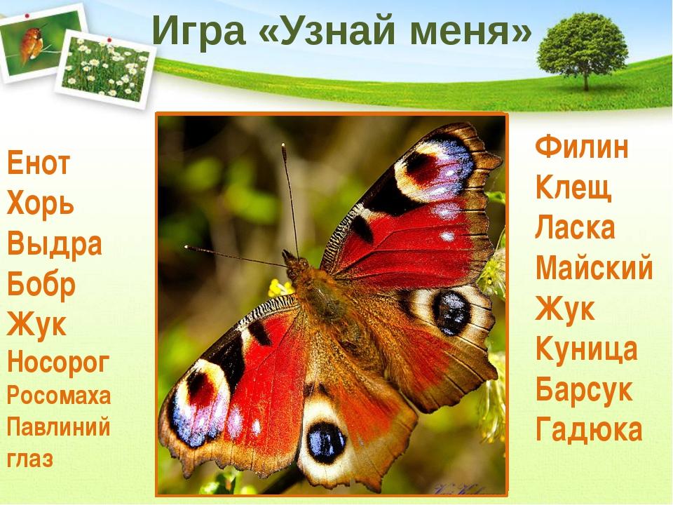 3 группа Нарисуйте запрещающие знаки поведения в природе 1 группа Составьте п...