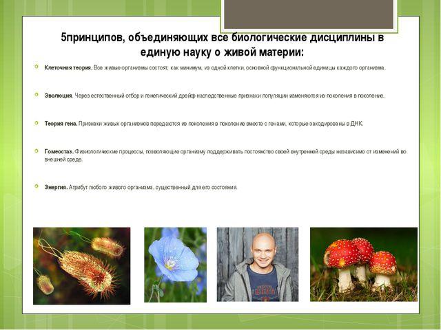 5принципов, объединяющих все биологические дисциплины в единую науку о живой...