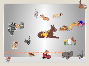 Кого больше на рисунке: кошек или собак?