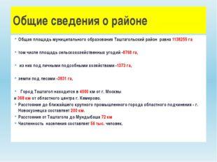 Общая площадь муниципального образования Таштагольский район равна 1138255 га