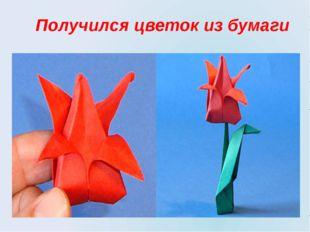 Получился цветок из бумаги