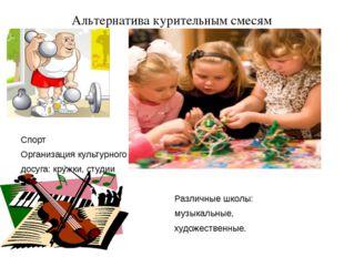 Альтернатива курительным смесям Спорт Организация культурного досуга: кружки,