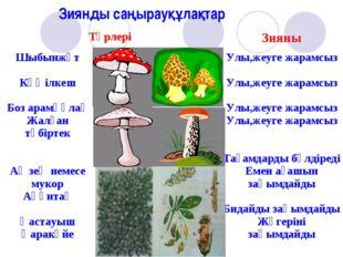Зиянды саңырауқұлақтар ТүрлеріЗияны Шыбынжұт Көңілкеш Боз арамқұлақ Жалған