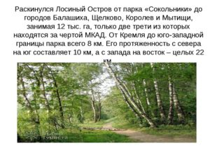 Раскинулся Лосиный Остров от парка «Сокольники» до городов Балашиха, Щелково,