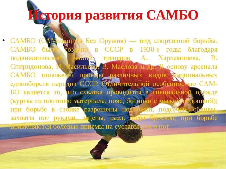 Реферат на тему борьба самбо 8246