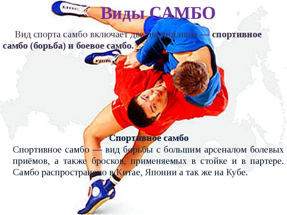 Реферат на тему борьба самбо 399