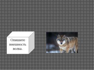 Опишите внешность волка.