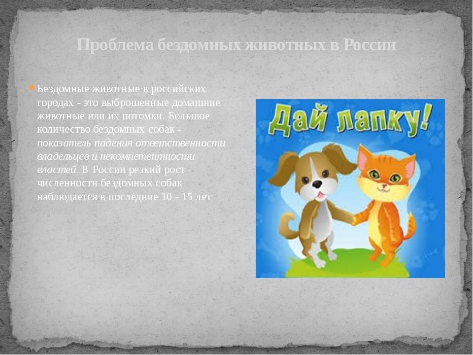 Проблема бездомных животных в России Бездомные животные в российских городах...