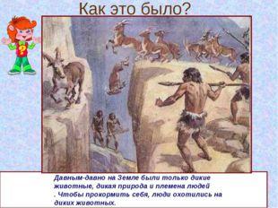 Как это было? Давным-давно на Земле были только дикие животные, дикая природа