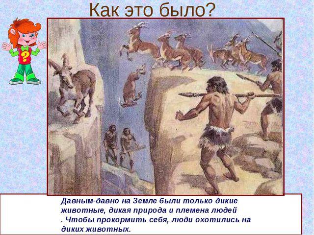 Как это было? Давным-давно на Земле были только дикие животные, дикая природа...