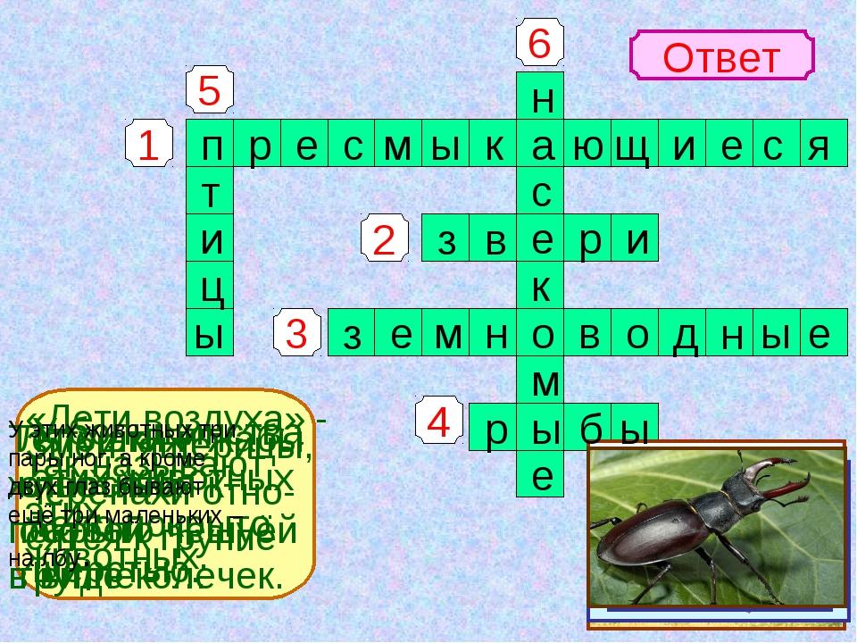 1 4 3 2 5 6 Ответ Змеи, ящерицы, черепахи отно- сятся к группе У большинства...