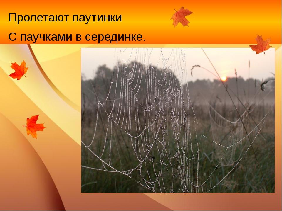 Пролетают паутинки С паучками в серединке.