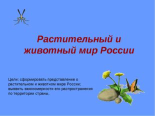 Растительный и животный мир России Цели: сформировать представление о растите