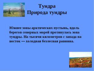 Тундра Природа тундры Южнее зоны арктических пустынь, вдоль берегов северных