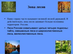 Зона лесов Нашу страну часто называют великой лесной державой. И действительн