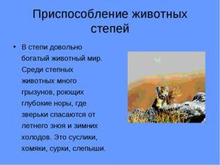 Приспособление животных степей В степи довольно богатый животный мир. Среди с