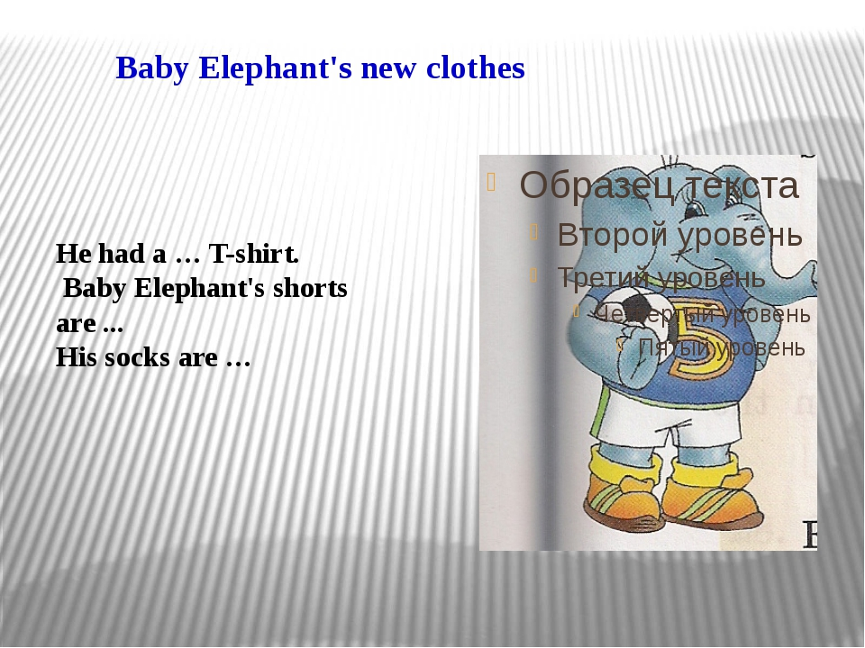 Baby Elephant's new clothes He had a … T-shirt. Baby Elephant's shorts are .....