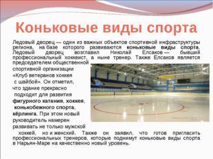 Коньковые виды спорта Ледовый дворец— один изважных объектов спортивной инф