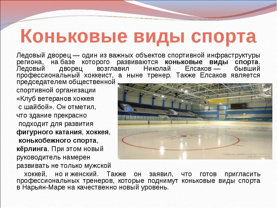 Коньковые виды спорта Ледовый дворец— один изважных объектов спортивной инф...